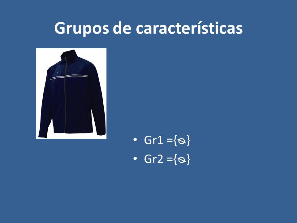 Grupos de características Gr1 ={} Gr2 ={}