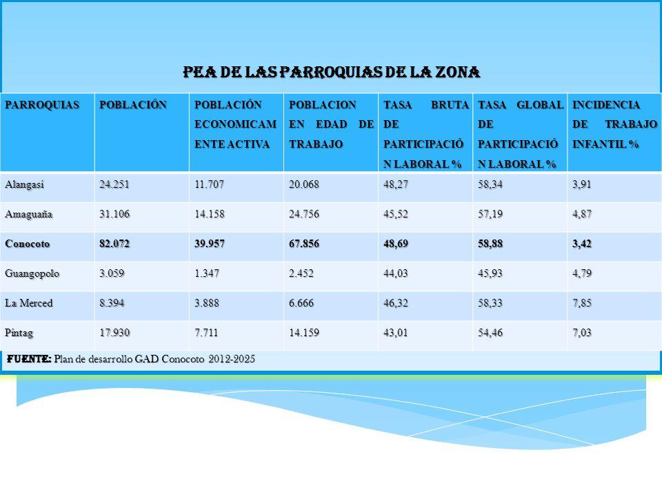 PEA DE LAS PARROQUIAS DE LA ZONA Fuente: Plan de desarrollo GAD Conocoto 2012-2025 PARROQUIASPOBLACIÓN POBLACIÓN ECONOMICAM ENTE ACTIVA POBLACION EN E