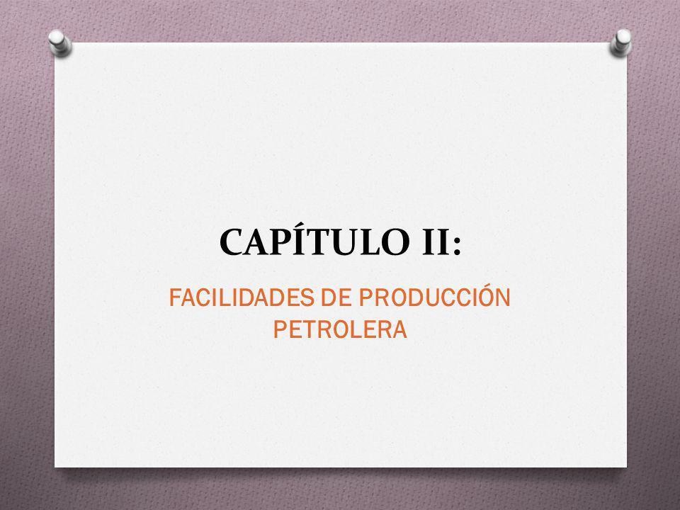 CAPÍTULO II: FACILIDADES DE PRODUCCIÓN PETROLERA