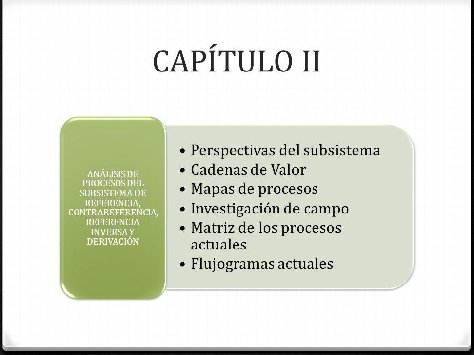 CAPÍTULO II Perspectivas del subsistema Cadenas de Valor Mapas de procesos Investigación de campo Matriz de los procesos actuales Flujogramas actuales