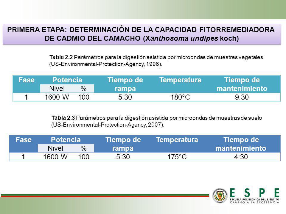 PRIMERA ETAPA: DETERMINACIÓN DE LA CAPACIDAD FITORREMEDIADORA DE CADMIO DEL CAMACHO (Xanthosoma undipes koch) PRIMERA ETAPA: DETERMINACIÓN DE LA CAPAC
