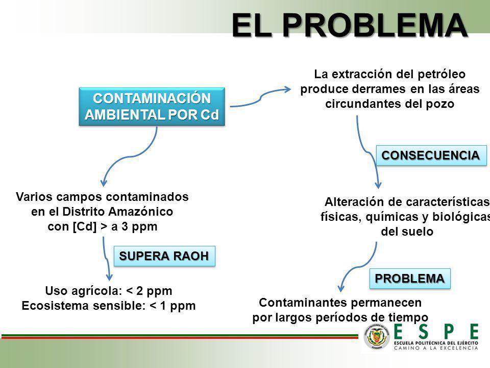 EL PROBLEMA La extracción del petróleo produce derrames en las áreas circundantes del pozo Alteración de características físicas, químicas y biológica