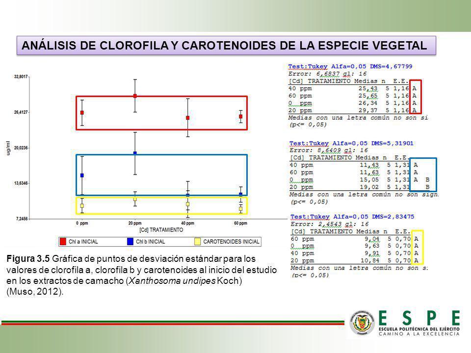 ANÁLISIS DE CLOROFILA Y CAROTENOIDES DE LA ESPECIE VEGETAL Figura 3.5 Gráfica de puntos de desviación estándar para los valores de clorofila a, clorof