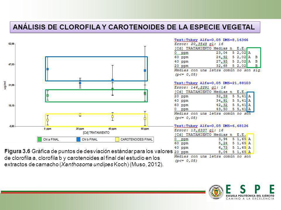 ANÁLISIS DE CLOROFILA Y CAROTENOIDES DE LA ESPECIE VEGETAL Figura 3.6 Gráfica de puntos de desviación estándar para los valores de clorofila a, clorof