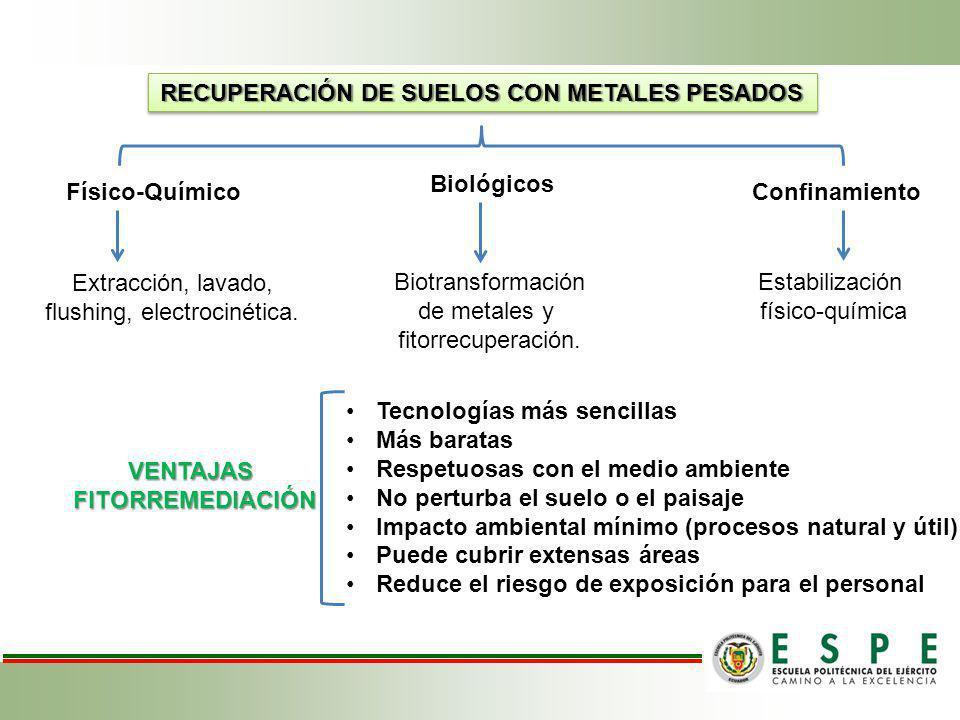 RECUPERACIÓN DE SUELOS CON METALES PESADOS Físico-Químico Biológicos Confinamiento Extracción, lavado, flushing, electrocinética. Biotransformación de