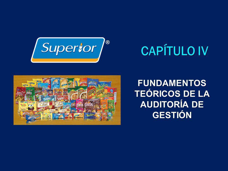 CAPÍTULO IV FUNDAMENTOS TEÓRICOS DE LA AUDITORÍA DE GESTIÓN