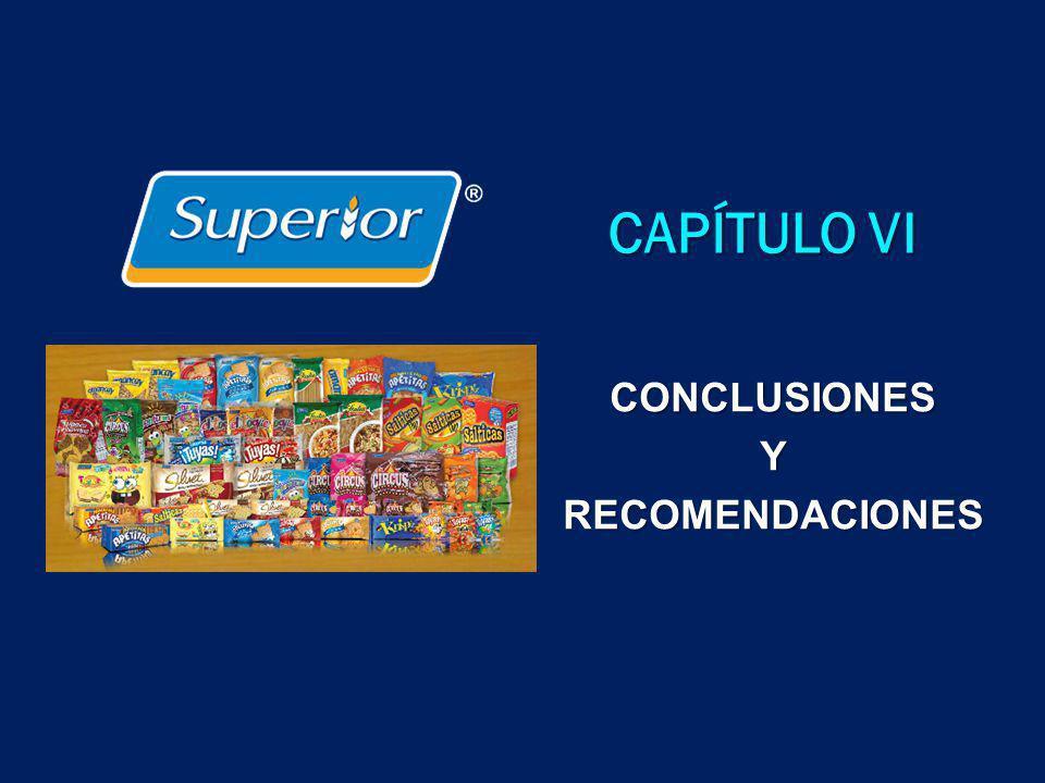 CAPÍTULO VI CONCLUSIONESYRECOMENDACIONES