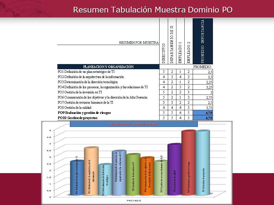 Resumen Tabulación Muestra Dominio PO