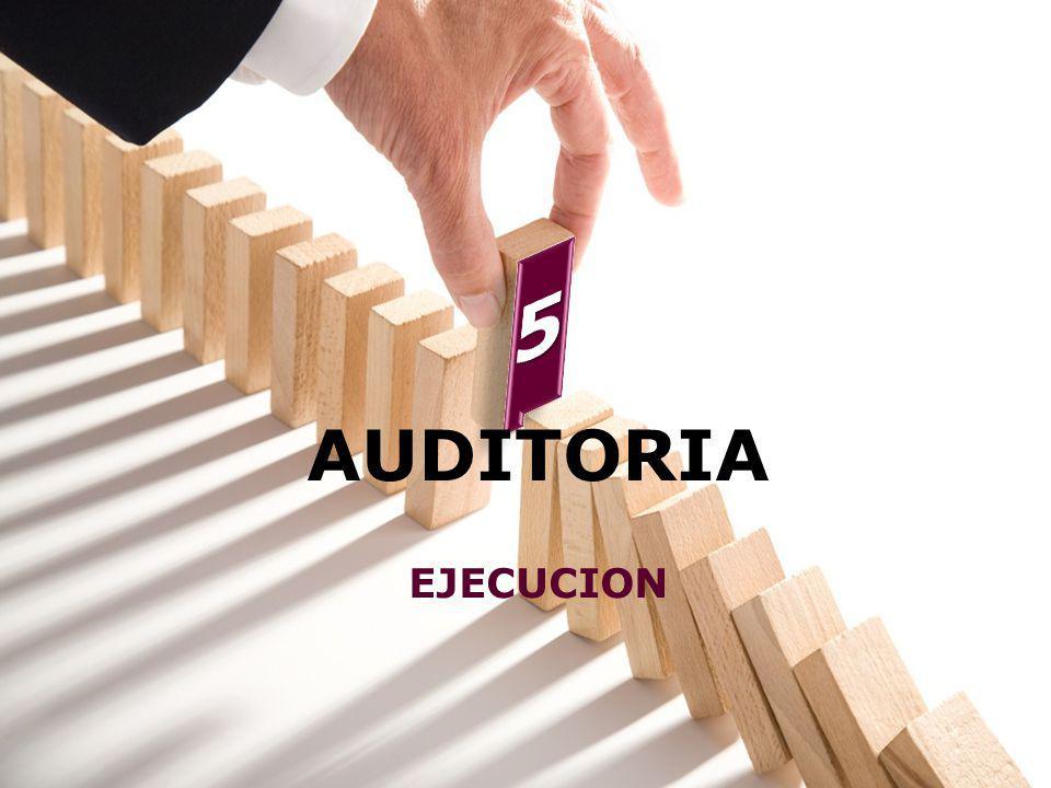 AUDITORIA EJECUCION