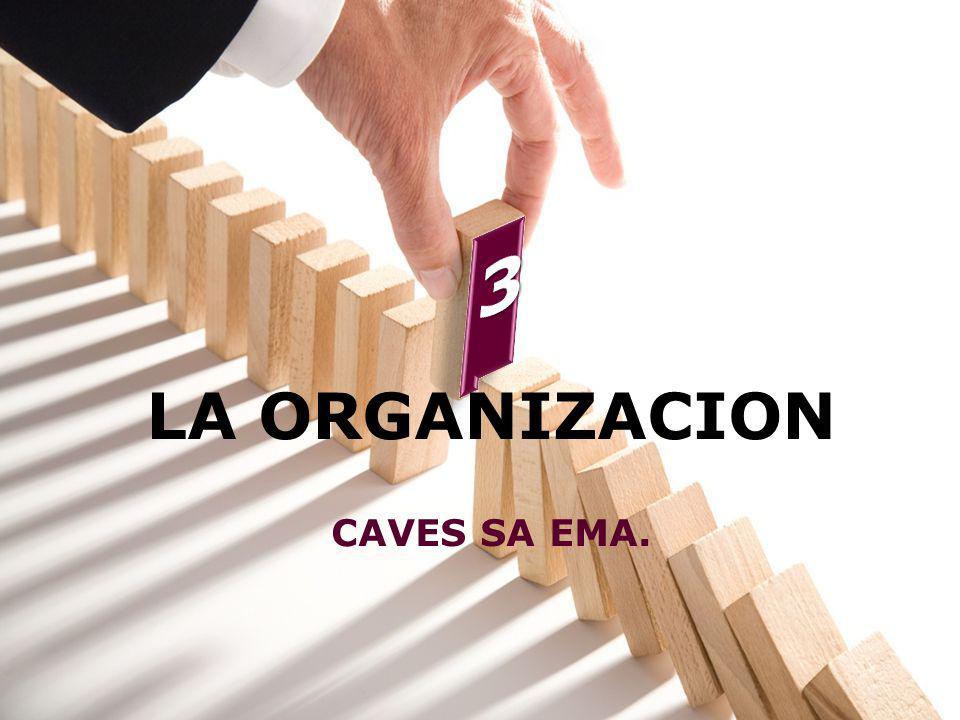 LA ORGANIZACION CAVES SA EMA.