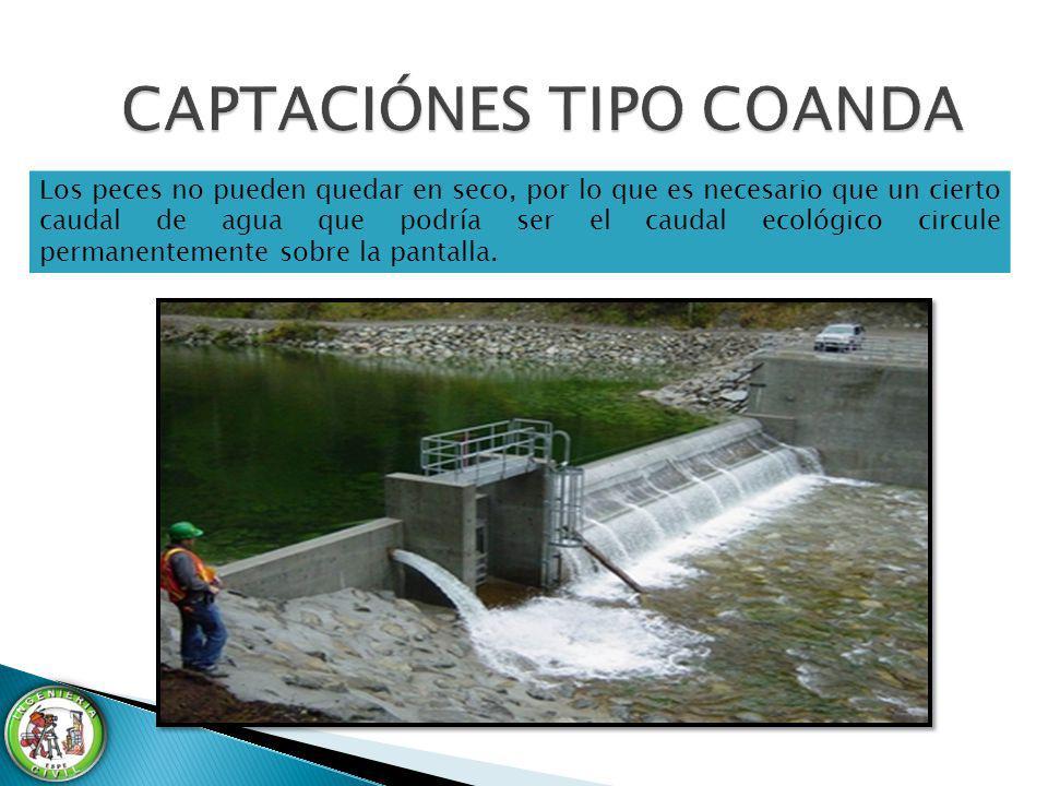 Los peces no pueden quedar en seco, por lo que es necesario que un cierto caudal de agua que podría ser el caudal ecológico circule permanentemente so