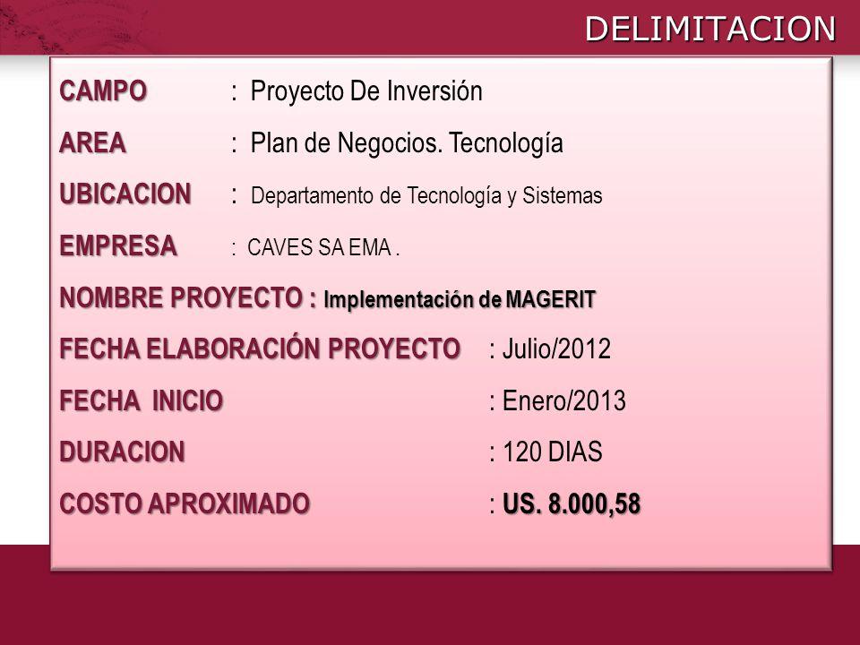 DELIMITACION CAMPO CAMPO : Proyecto De Inversión AREA AREA : Plan de Negocios. Tecnología UBICACION UBICACION : Departamento de Tecnología y Sistemas
