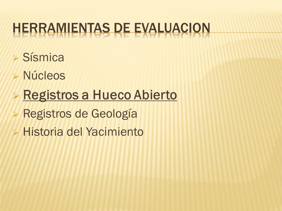 Sísmica Núcleos Registros a Hueco Abierto Registros de Geología Historia del Yacimiento