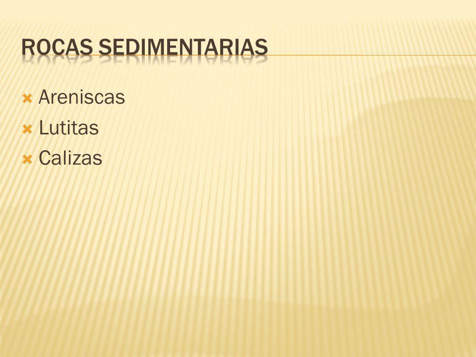 Areniscas Lutitas Calizas