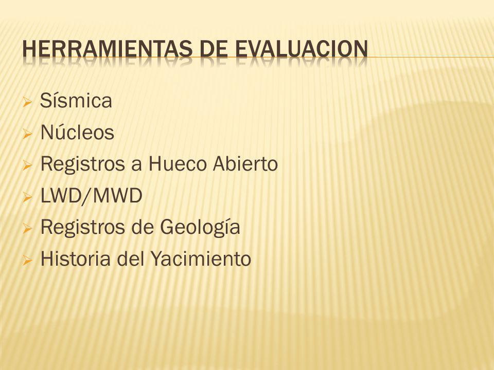 Sísmica Núcleos Registros a Hueco Abierto LWD/MWD Registros de Geología Historia del Yacimiento