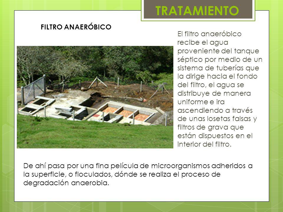 FILTRO ANAERÓBICO El filtro anaeróbico recibe el agua proveniente del tanque séptico por medio de un sistema de tuberías que la dirige hacia el fondo