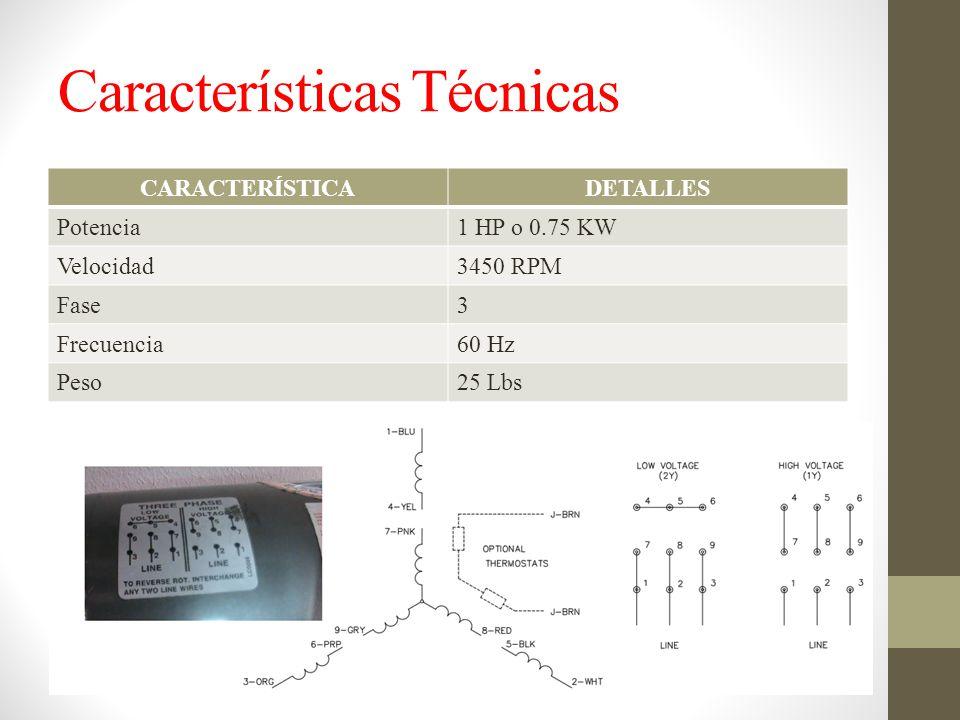 Características Técnicas CARACTERÍSTICADETALLES Potencia1 HP o 0.75 KW Velocidad3450 RPM Fase3 Frecuencia60 Hz Peso25 Lbs