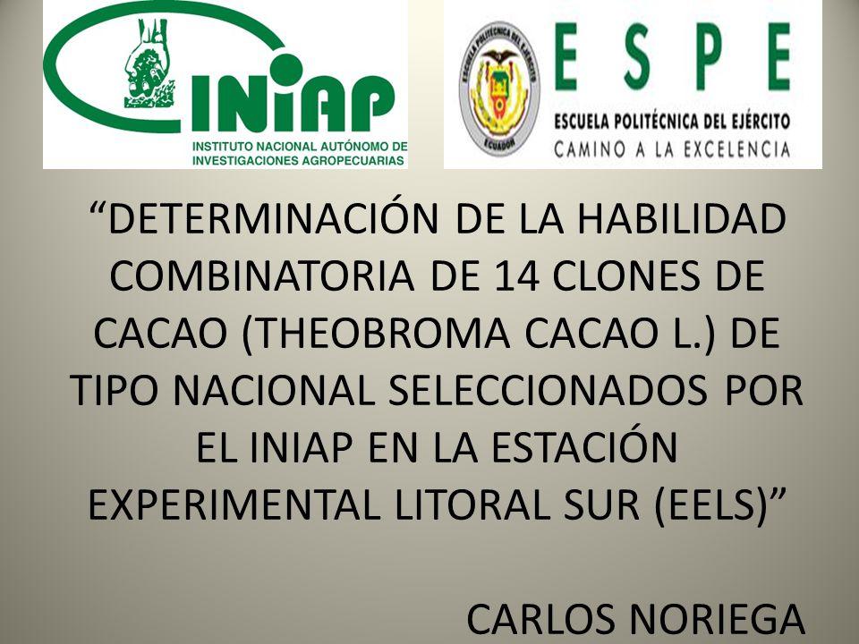 DETERMINACIÓN DE LA HABILIDAD COMBINATORIA DE 14 CLONES DE CACAO (THEOBROMA CACAO L.) DE TIPO NACIONAL SELECCIONADOS POR EL INIAP EN LA ESTACIÓN EXPER