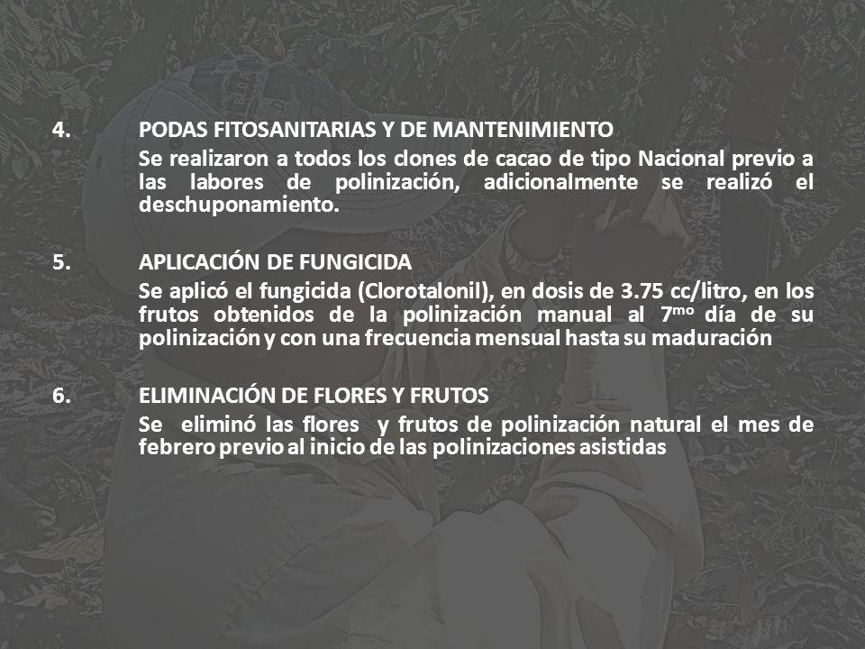 4.PODAS FITOSANITARIAS Y DE MANTENIMIENTO Se realizaron a todos los clones de cacao de tipo Nacional previo a las labores de polinización, adicionalme