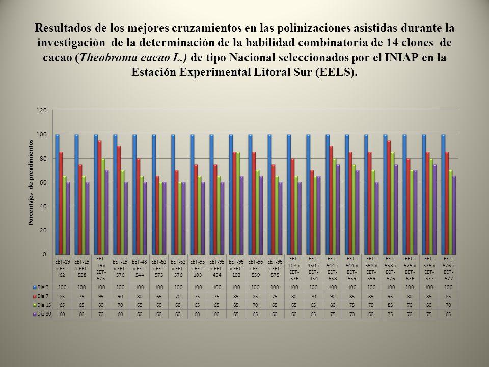Resultados de los mejores cruzamientos en las polinizaciones asistidas durante la investigación de la determinación de la habilidad combinatoria de 14