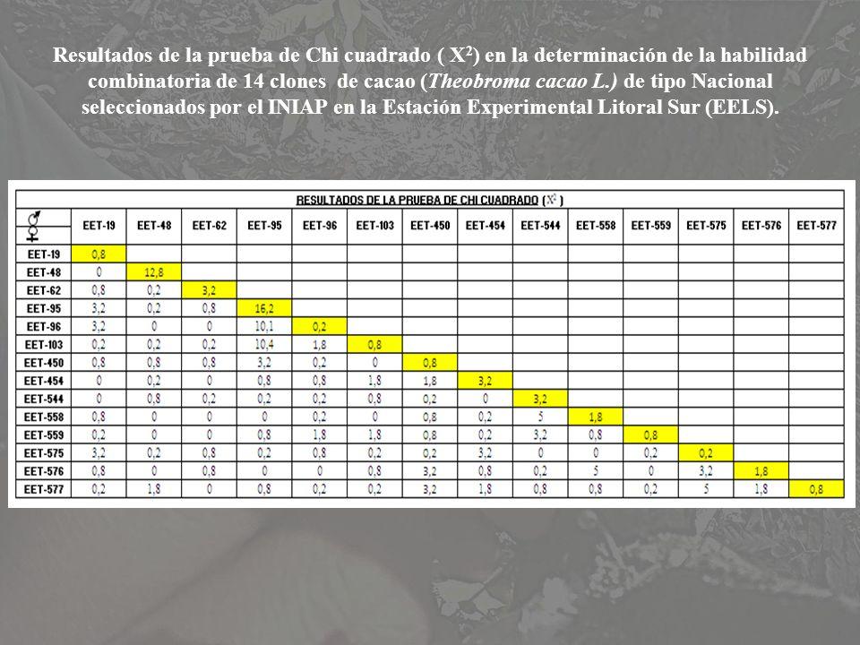 Resultados de la prueba de Chi cuadrado ( X 2 ) en la determinación de la habilidad combinatoria de 14 clones de cacao (Theobroma cacao L.) de tipo Na