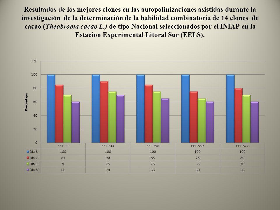 Resultados de los mejores clones en las autopolinizaciones asistidas durante la investigación de la determinación de la habilidad combinatoria de 14 c