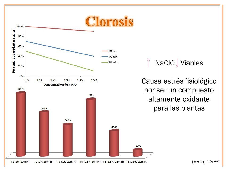 NaClO Viables Causa estrés fisiológico por ser un compuesto altamente oxidante para las plantas (Vera, 1994