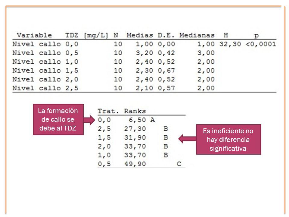 La formación de callo se debe al TDZ Es ineficiente no hay diferencia significativa