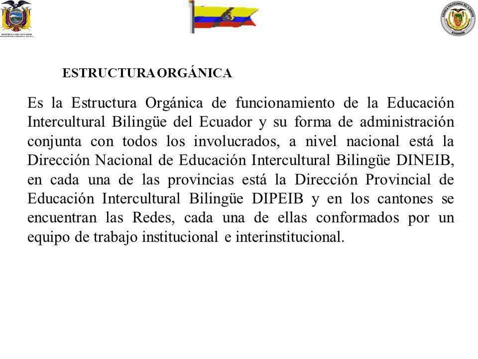 ESTRUCTURA ORGÁNICA Es la Estructura Orgánica de funcionamiento de la Educación Intercultural Bilingüe del Ecuador y su forma de administración conjun
