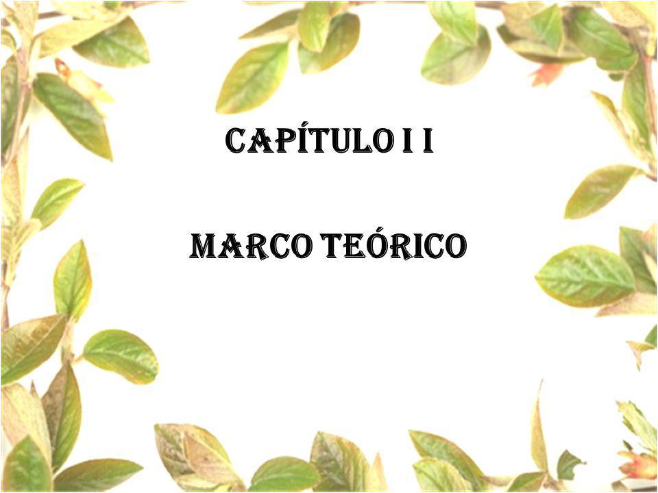 CAPÍTULO I i MARCO TEÓRICO