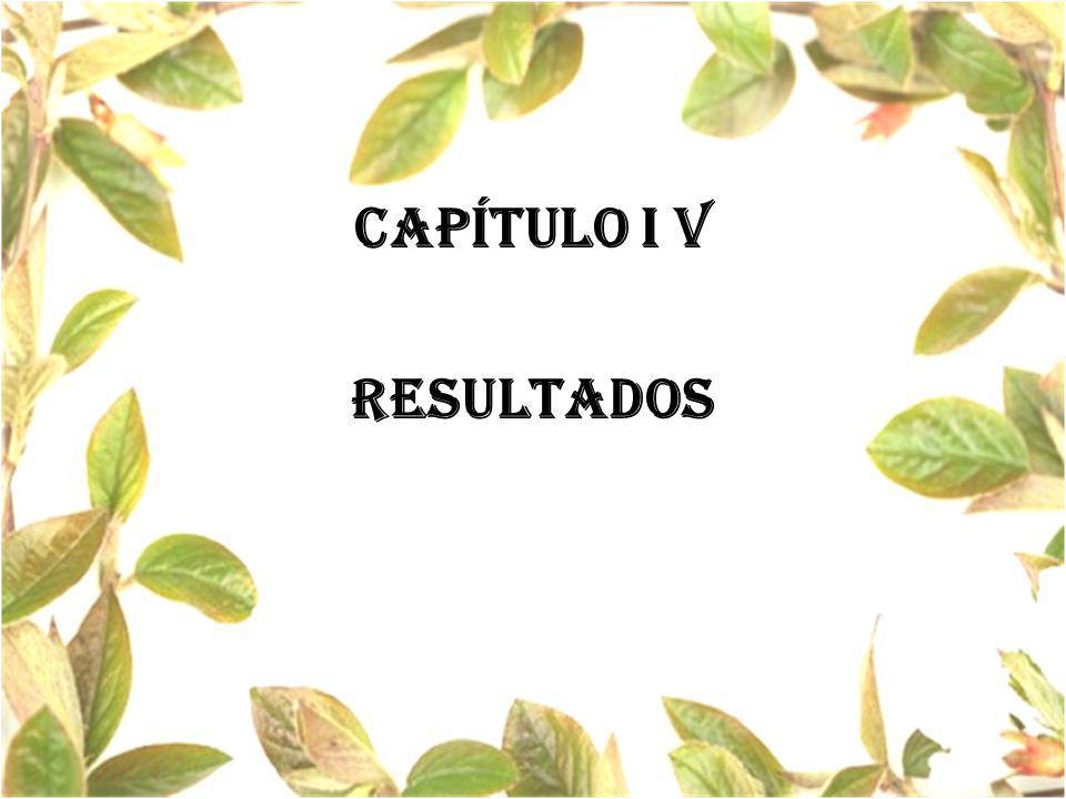 CAPÍTULO I V resultados