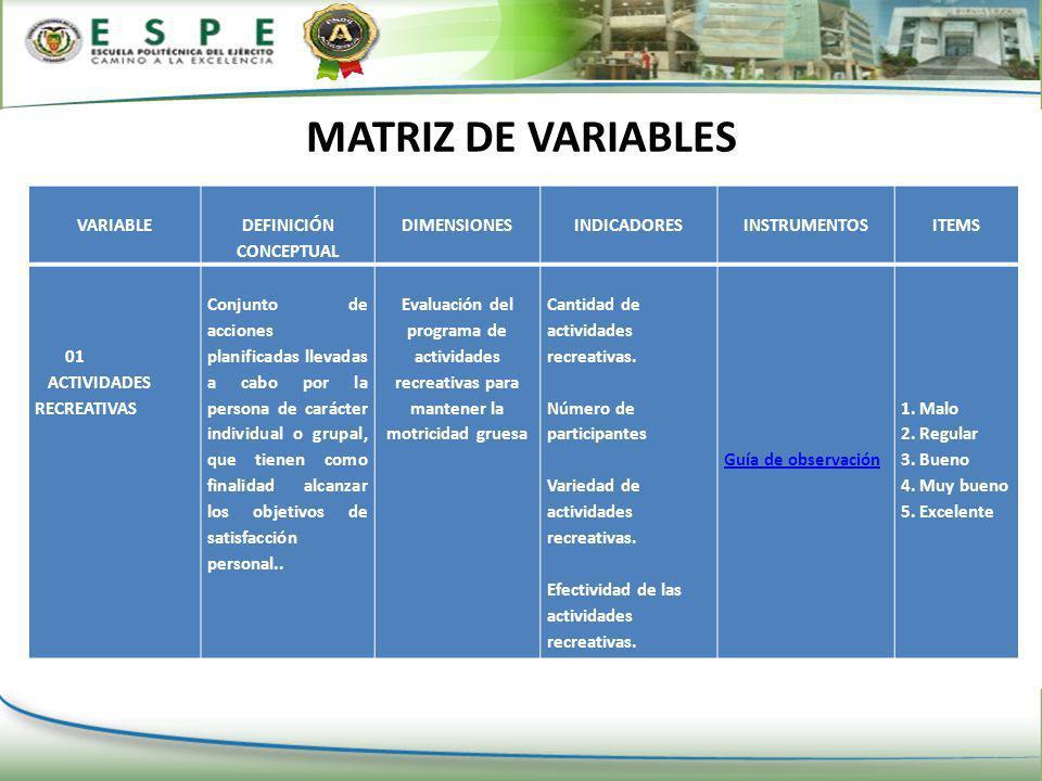 DETERMINACION DE LAS VARIABLES DE LA INVESTIGACION Actividades Recreativas VARIABLE INDEPENDIENTE La Motricidad Gruesa VARIABLE DEPENDIENTE