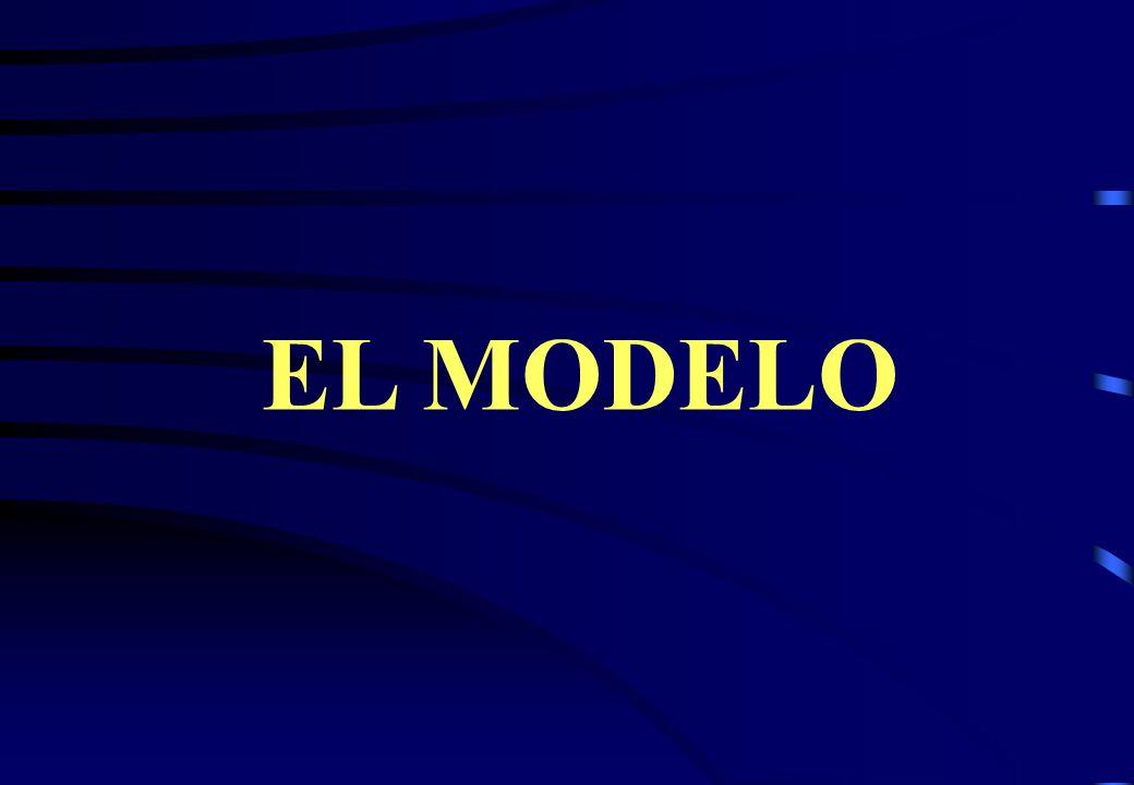 SOSTENIBILIDAD CONCEPTUAL MAX SALUD / PLANIFICACION ESTRATEGICA SOSTENIBILIDAD SOCIAL SOSTENIBILIDAD ECONOMICA SOSTENIBILIDAD OPERATIVA SOSTENIBILIDAD INSTITUCIONAL