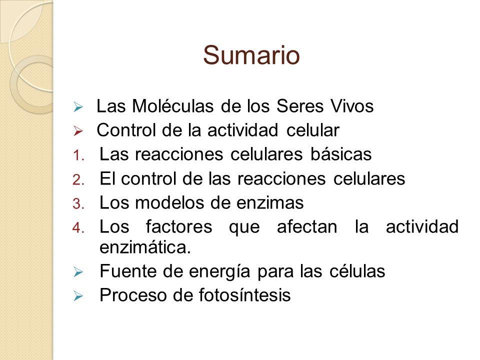 Sumario Las Moléculas de los Seres Vivos Control de la actividad celular 1. Las reacciones celulares básicas 2. El control de las reacciones celulares