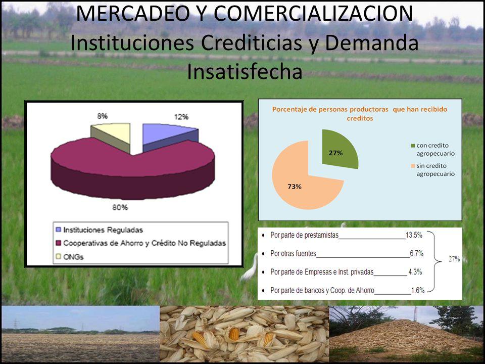 MERCADEO Y COMERCIALIZACION Instituciones Crediticias y Demanda Insatisfecha