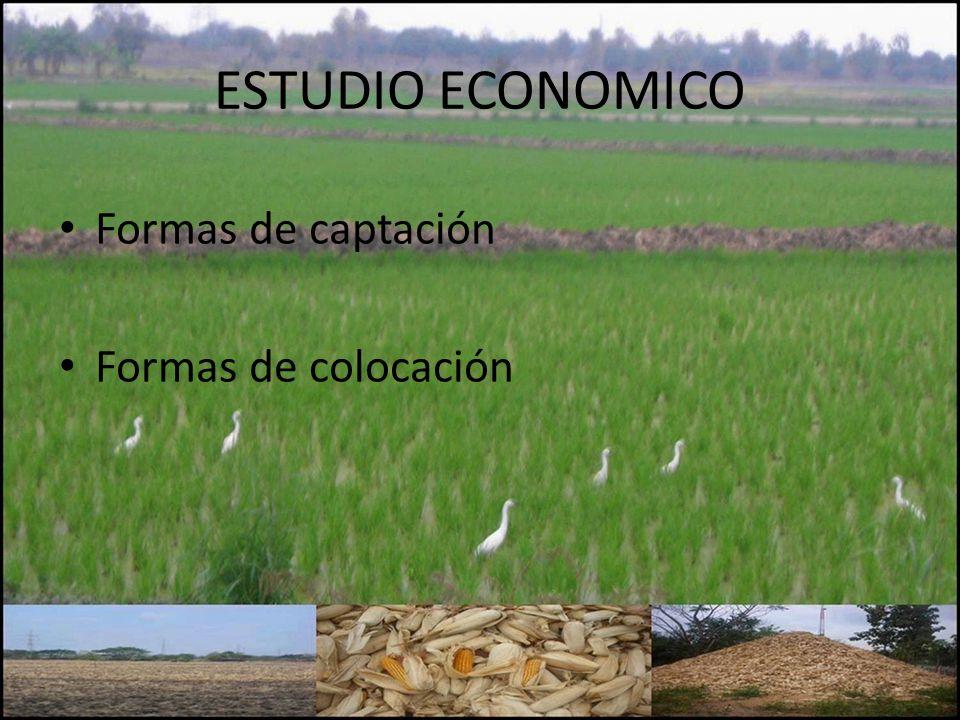 ESTUDIO ECONOMICO Formas de captación Formas de colocación