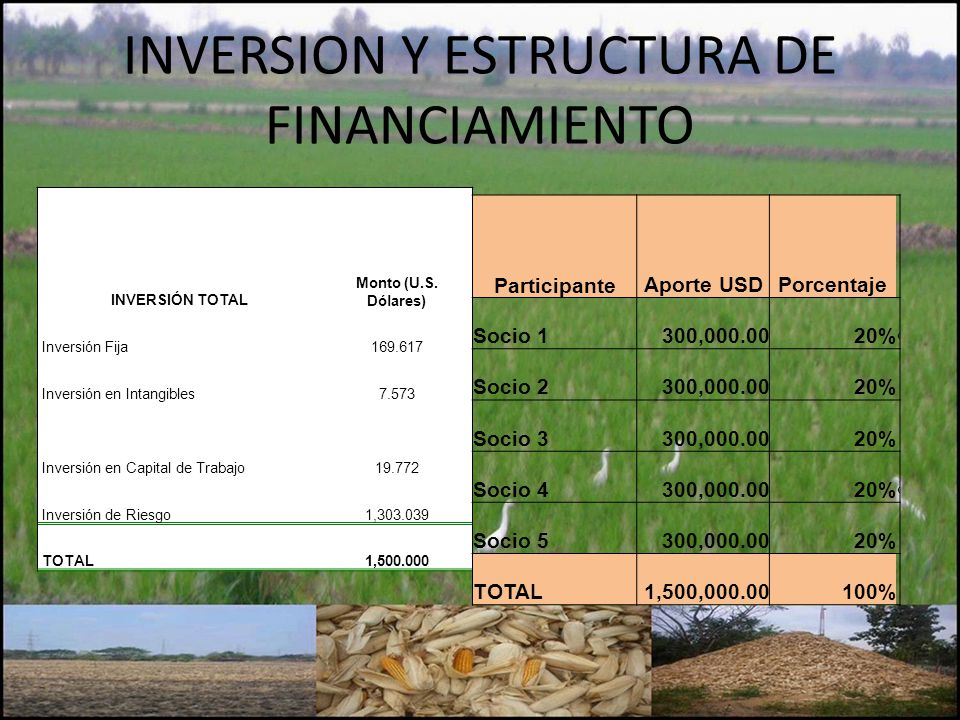 INVERSION Y ESTRUCTURA DE FINANCIAMIENTO INVERSIÓN TOTAL Monto (U.S. Dólares) Inversión Fija169.617 Inversión en Intangibles7.573 Inversión en Capital