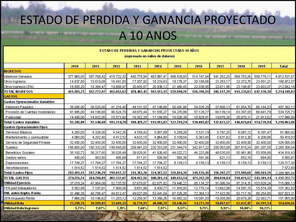 ESTADO DE PERDIDA Y GANANCIA PROYECTADO A 10 ANOS