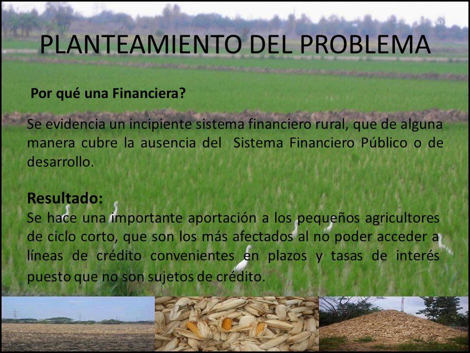 PLANTEAMIENTO DEL PROBLEMA Por qué una Financiera? Se evidencia un incipiente sistema financiero rural, que de alguna manera cubre la ausencia del Sis