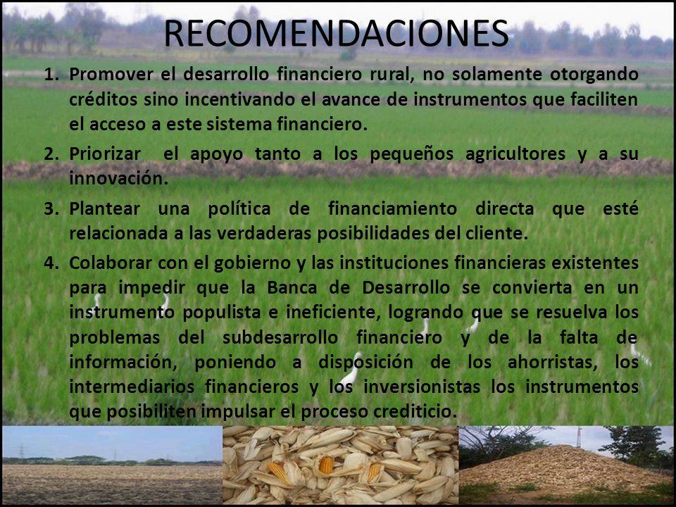 RECOMENDACIONES 1.Promover el desarrollo financiero rural, no solamente otorgando créditos sino incentivando el avance de instrumentos que faciliten el acceso a este sistema financiero.