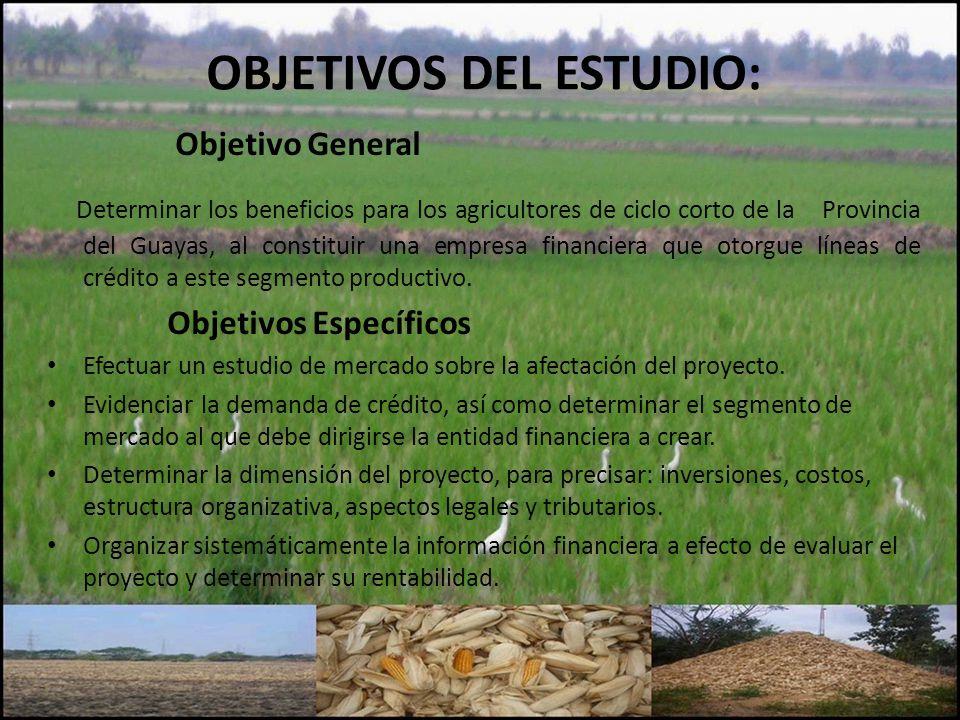 OBJETIVOS DEL ESTUDIO: Objetivo General Determinar los beneficios para los agricultores de ciclo corto de la Provincia del Guayas, al constituir una empresa financiera que otorgue líneas de crédito a este segmento productivo.