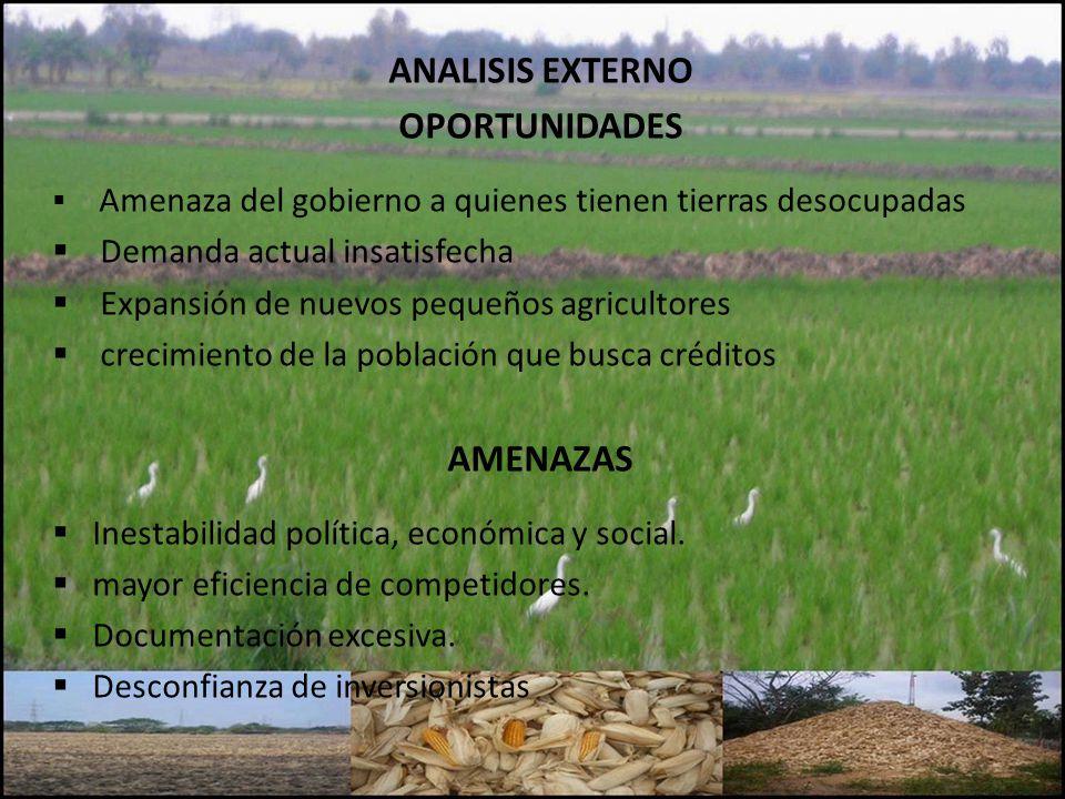 ANALISIS EXTERNO OPORTUNIDADES Amenaza del gobierno a quienes tienen tierras desocupadas Demanda actual insatisfecha Expansión de nuevos pequeños agri