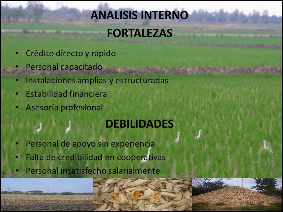 ANALISIS INTERNO FORTALEZAS Crédito directo y rápido Personal capacitado Instalaciones amplias y estructuradas Estabilidad financiera Asesoría profesi