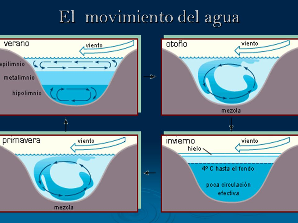 El movimiento del agua