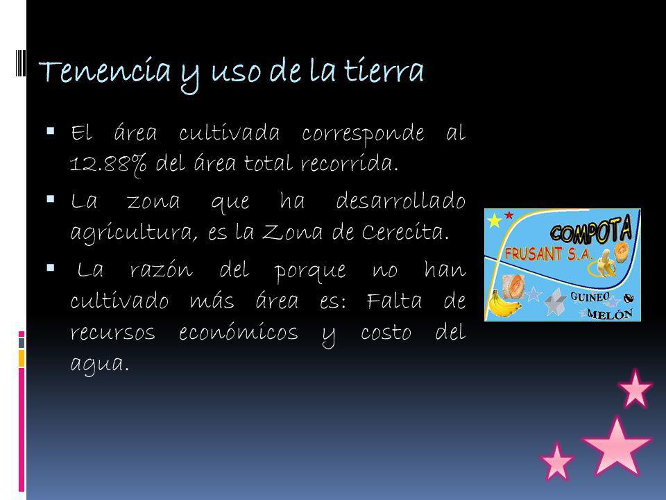 Tenencia y uso de la tierra El área cultivada corresponde al 12.88% del área total recorrida.
