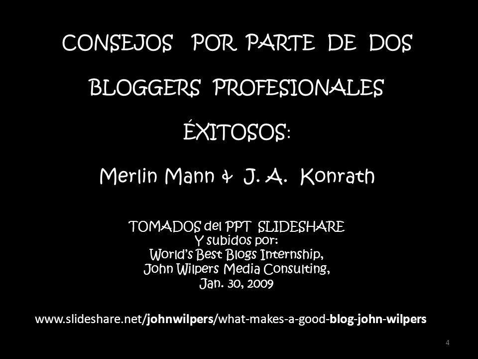 4 CONSEJOS POR PARTE DE DOS BLOGGERS PROFESIONALES ÉXITOSOS : Merlin Mann & J.