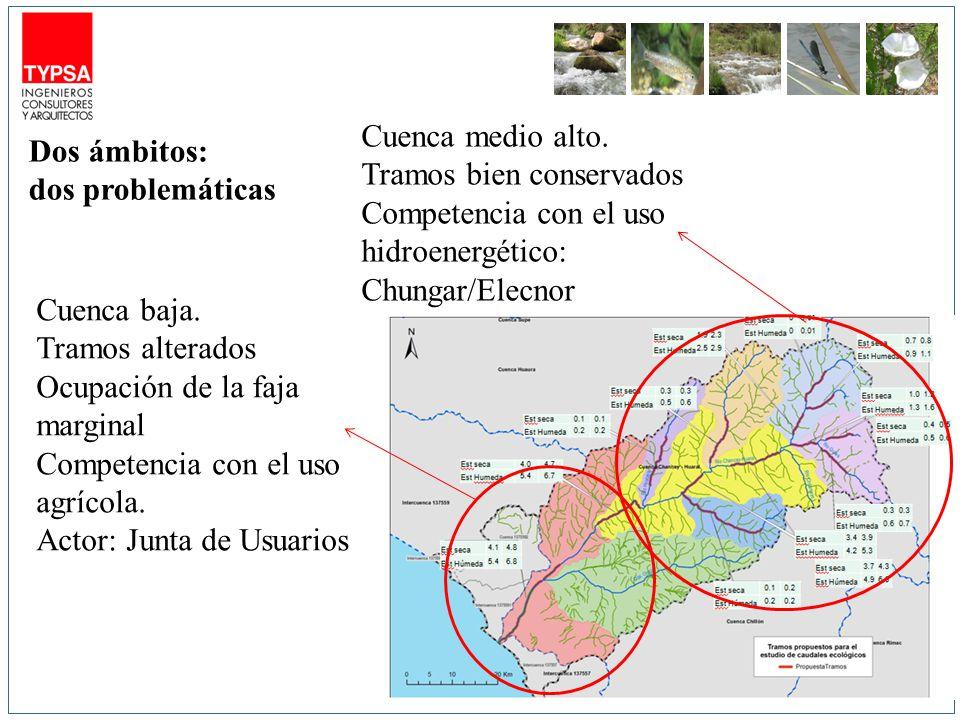 Dos ámbitos: dos problemáticas Cuenca medio alto. Tramos bien conservados Competencia con el uso hidroenergético: Chungar/Elecnor Cuenca baja. Tramos