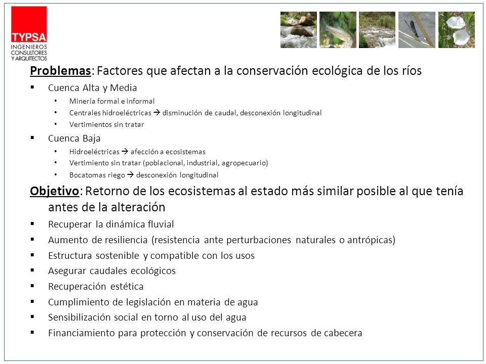 Problemas: Factores que afectan a la conservación ecológica de los ríos Cuenca Alta y Media Minería formal e informal Centrales hidroeléctricas dismin