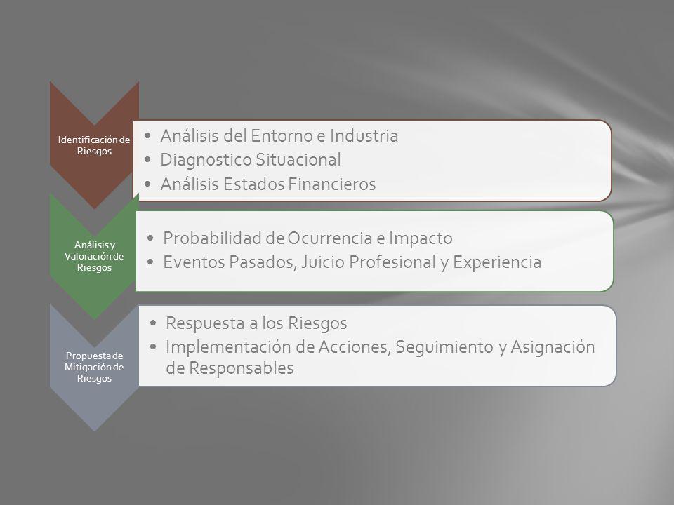 Identificación de Riesgos Análisis del Entorno e Industria Diagnostico Situacional Análisis Estados Financieros Análisis y Valoración de Riesgos Proba