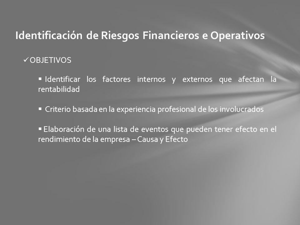 Identificación de Riesgos Financieros e Operativos OBJETIVOS Identificar los factores internos y externos que afectan la rentabilidad Criterio basada